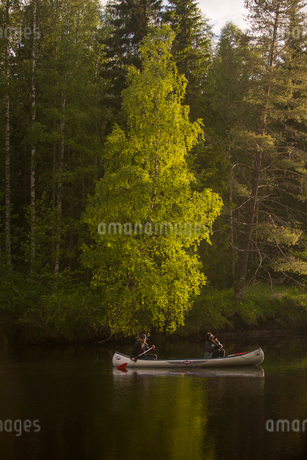 People rowing in Vasterbotten, Swedenの写真素材 [FYI02945570]