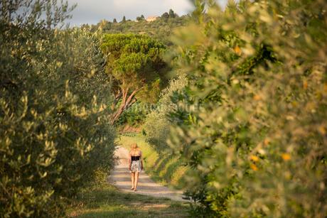 Italy, Tuscany, Dicomano, Woman walking along road in vineyardの写真素材 [FYI02945655]