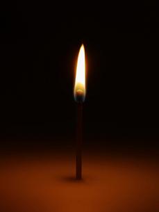 Single Matchstick Burningの写真素材 [FYI02945735]