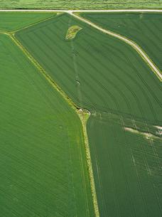 Finland, Uusimaa, Porkkala, Aerial view of green fieldの写真素材 [FYI02945948]