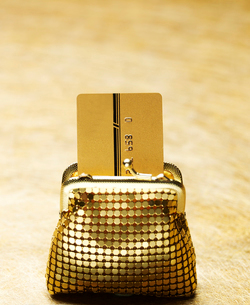 Credit Card in Golden Purseの写真素材 [FYI02946005]