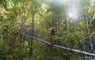 Tourist, woman on suspension bridge in jungle, Kuala Tahanの写真素材 [FYI02946158]