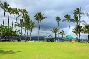 ハワイ島ヒロのココナッツアイランドの写真素材 [FYI02946183]