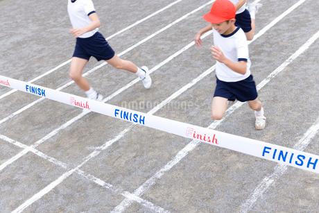 徒競走の写真素材 [FYI02946212]