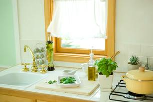 スイートバジルのある明るいキッチンの写真素材 [FYI02946609]