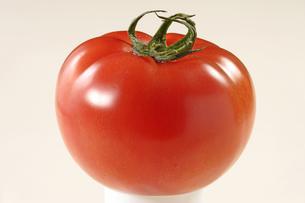 トマトの写真素材 [FYI02946834]