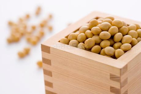 枡に入った大豆の写真素材 [FYI02947444]