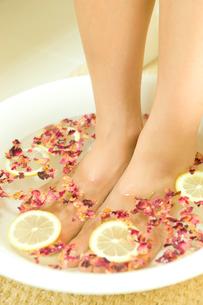 ローズレッドとレモンの足湯をする女性の写真素材 [FYI02947634]