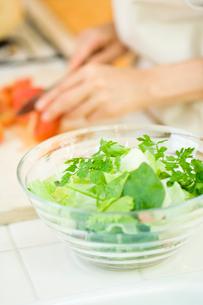 チャービルのハーブサラダとトマトを刻む女性の写真素材 [FYI02947986]