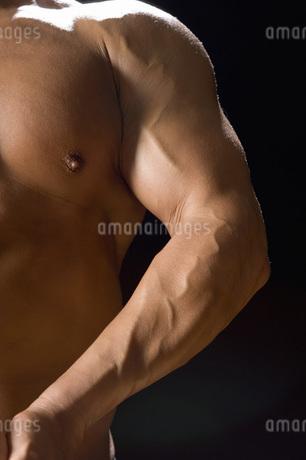 たくましい腕の写真素材 [FYI02948411]