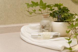観葉植物と化粧水瓶の写真素材 [FYI02949078]