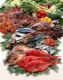 魚介集合の写真素材 [FYI02949202]
