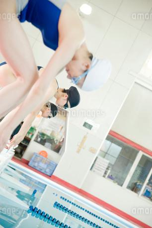 プールに飛び込む女性たちの写真素材 [FYI02950082]