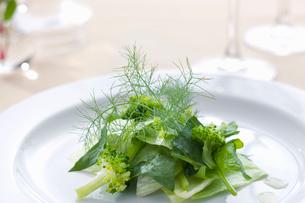 フェンネルフローレンスとブロッコリーのグリーンサラダの写真素材 [FYI02950110]