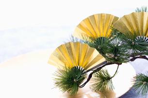金の扇子と松 正月イメージの写真素材 [FYI02950254]