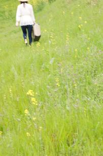 トランクを持って草原を歩く女性の後姿の写真素材 [FYI02951620]