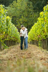 Couple hugging in vineyardの写真素材 [FYI02953017]