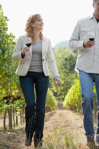 Man and woman walking in vineyardの写真素材 [FYI02953040]