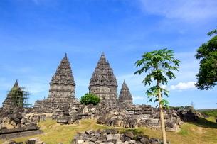 インドネシア ジャワ島 プランバナン寺院史跡公園の写真素材 [FYI02953368]