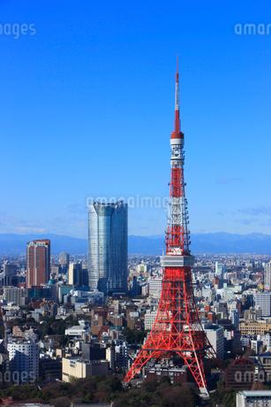 東京タワーと六本木の高層ビルの写真素材 [FYI02954317]