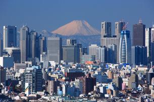 新宿ビル群と富士山の写真素材 [FYI02954590]