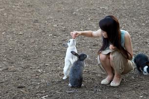 ウサギに餌付けする20代日本人女性の写真素材 [FYI02954605]
