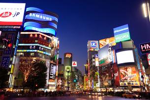 渋谷駅ハチ公口駅前スクランブル交差点周辺の夜景の写真素材 [FYI02954767]