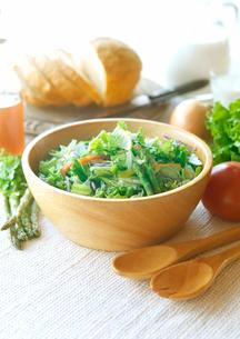 有機野菜を使ったサラダの写真素材 [FYI02955194]