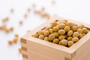 枡に入った大豆の写真素材 [FYI02955652]