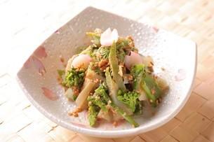 春野菜のごま和えの写真素材 [FYI02957943]