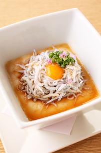 自家製生豆腐しらすユッケのせの写真素材 [FYI02957975]