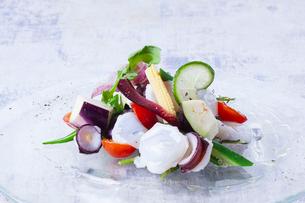タコと夏野菜のセビーチェの写真素材 [FYI02957995]