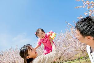 桜の咲く公園で娘を抱き上げる3人家族の写真素材 [FYI02958220]