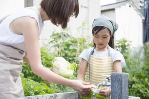 野菜を洗っている親子の写真素材 [FYI02958365]