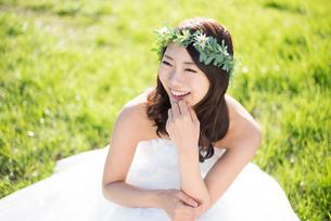 草の上に座るウェディングドレス姿の女性の写真素材 [FYI02958409]
