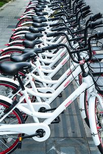 歩道に並ぶレンタル自転車の写真素材 [FYI02958439]