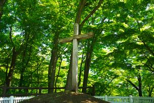 キリストの里公園 キリストの墓の写真素材 [FYI02958454]