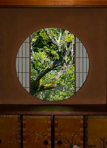 雲龍院の悟りの窓の写真素材 [FYI02958496]