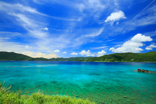 奄美大島 タエン崎付近から望む焼内湾の写真素材 [FYI02958504]