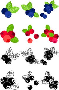 ブルーベリーとクランベリーの可愛いアイコンのイラスト素材 [FYI02958543]