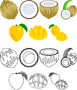 ココナッツとマンゴーの可愛いアイコンのイラスト素材 [FYI02958552]