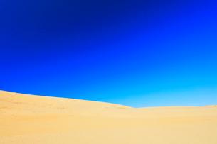 快晴の空に鳥取砂丘の写真素材 [FYI02958555]