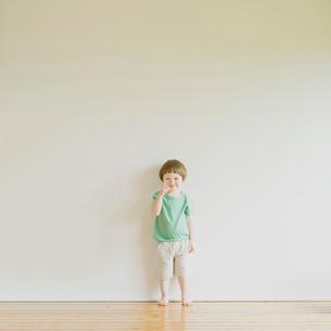 微笑むハーフの男の子の写真素材 [FYI02958729]