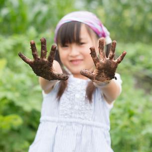土のついた手を見せる女の子の写真素材 [FYI02958740]