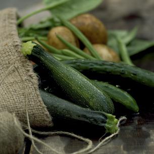 麻袋に入れた野菜の写真素材 [FYI02959042]