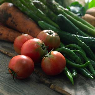 穫れたての野菜とトマトの写真素材 [FYI02959133]