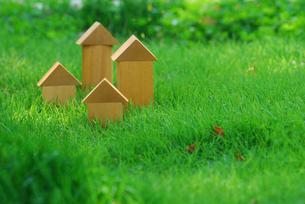 芝生に置かれた積み木の家の写真素材 [FYI02959172]