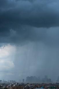 ゲリラ豪雨を浴びる新宿高層ビル群(縦)の写真素材 [FYI02959537]
