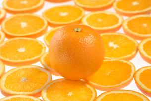 オレンジの写真素材 [FYI02959647]