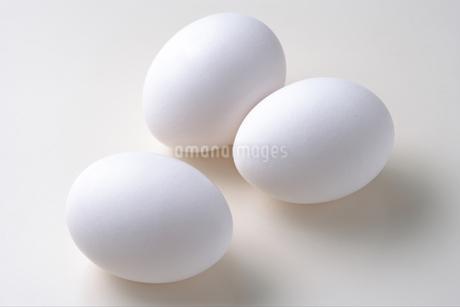 卵の写真素材 [FYI02959680]
